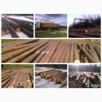 Срубы бань, домов и беседок из рубленого леса