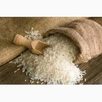 Рис крупа