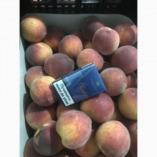 Персики оптом на прямую от производителя