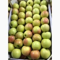 Различные сорта яблок. Оптом