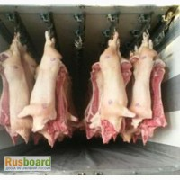 Свинина, говядина полутуши оптом
