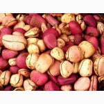 Орех Кола. Природный энергетик, средство для похудения.Продукция из Африки