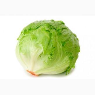 Продаем салат