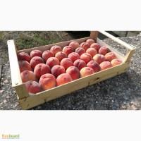 Крым.Ящики шпоновые для упаковки фруктов и овощей