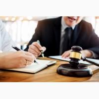 Профессиональные юридические услуги