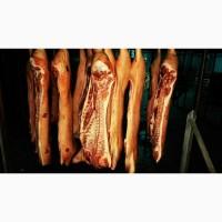 Мясо свинина в полутушах оптом