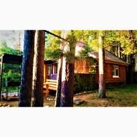 Сдаю дом в красивейшем месте Селигера - в сосновом бору, у озера