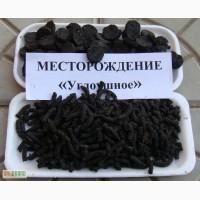 Бизнес по производству продукции из сапропеля в Тюмени «под ключ»