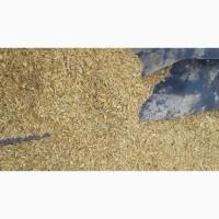 Зерноотходы ячменя