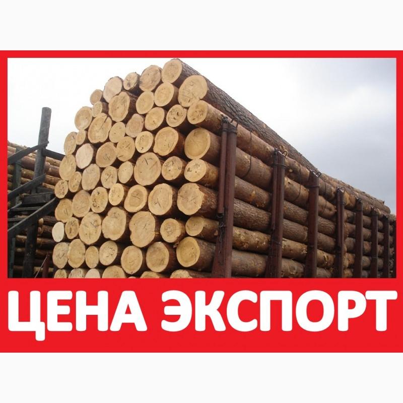 купить лес доска