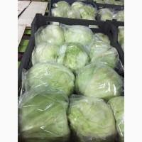 Продам салат Айсберг Иран