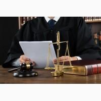 Судебные юристы