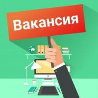Временный директор (подработка), выплаты ежедневно