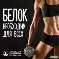 Белок Гербалайф Ставрополь