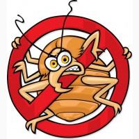 Служба по борьбе с клопами и тараканами в Орле