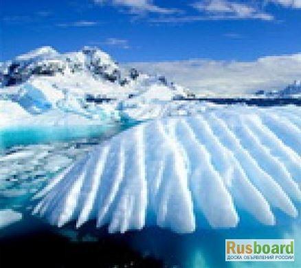 Фото 2. Antarcticine - Защищает кожу и удерживает влагу, 5