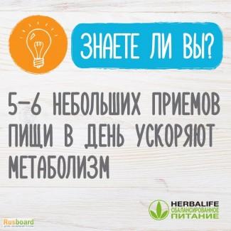 Обмен веществ Гербалайф Ставрополь