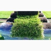 Искусственная трава – идеальное решение для спортивных школьных и детских площадок