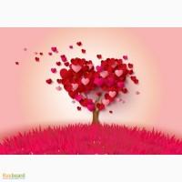 Магия любви, магия отношений, помощь в разных ситуациях, гадание на ТАРО, на будущее