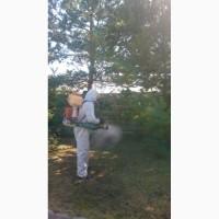 Заказать обработку участка от клещей и комаров организация Городец