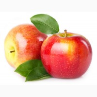 Купим яблоки