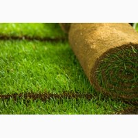 Продаем рулонный газон