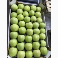 Яблоки оптом Краснодар