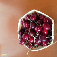 Эко-упаковка для ягод, фруктов из шпона