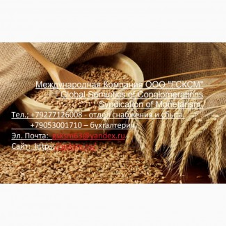 Оптовая продажа ячмень продовольственный и фуражный