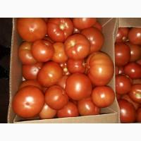 Свежие томаты из Белоруссии со склада в СПб