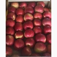 Яблоки/Урожай 2018 года/Оптом