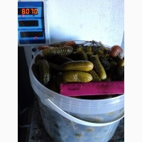 Огурцы солёные/6-12 см/