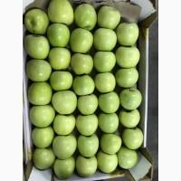 Продажа яблок с Садов