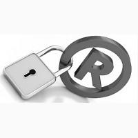 Защита Интеллектуальной Собственности, Регистрация бизнеса в ОАЭ
