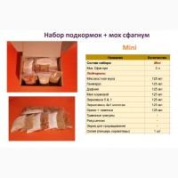Наборы/комплекты для террариума с подкормками для улиток Ахатина и Архахатина