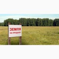 Продам земельный участок в Кондопожском районе