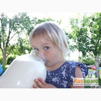 Молочная продукция от производителя оптом Ростов