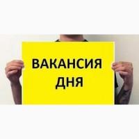 Подработка в Москве с ежедневной зарплатой от 4000 до 12000 рублей