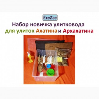 Набор новичка улитковода для улиток Ахатина и Архахатина