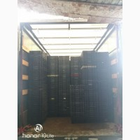Продам : пнд литье в изделиях ( пнд ящики и пнд крышки )
