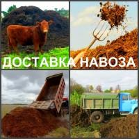 Навоз Воронеж, доставка навоза в Воронеже