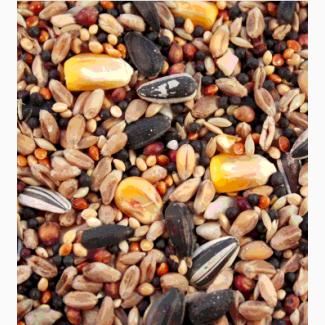 ООО «Атлантис» продаёт зерносмесь: пшеница, кукуруза, просо, семечка (в мешках)