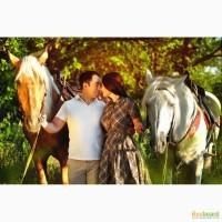 Прокат лошадей, конные прогулки, экскурсии, фотосессии с лошадьми в Ростове-на-Дону