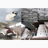 Сахар-песок с поставкой в Узбекистан
