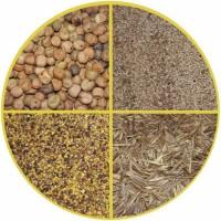 Продажа семян однолетних и многолетних кормовых и пастбищных, медоносных культур