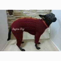 Комбинезоны и свитера для Ксоло, Перуанских собак