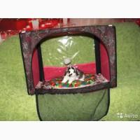 Выставочная палатка для кошек Ладиоли