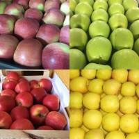 Продаем яблоки молдавские в г. Брянске