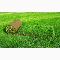 ООО НПП «Зарайские семена» продаём оптом и в розницу рулонные газоны