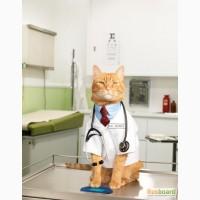 Лицензия на ветеринарную аптеку